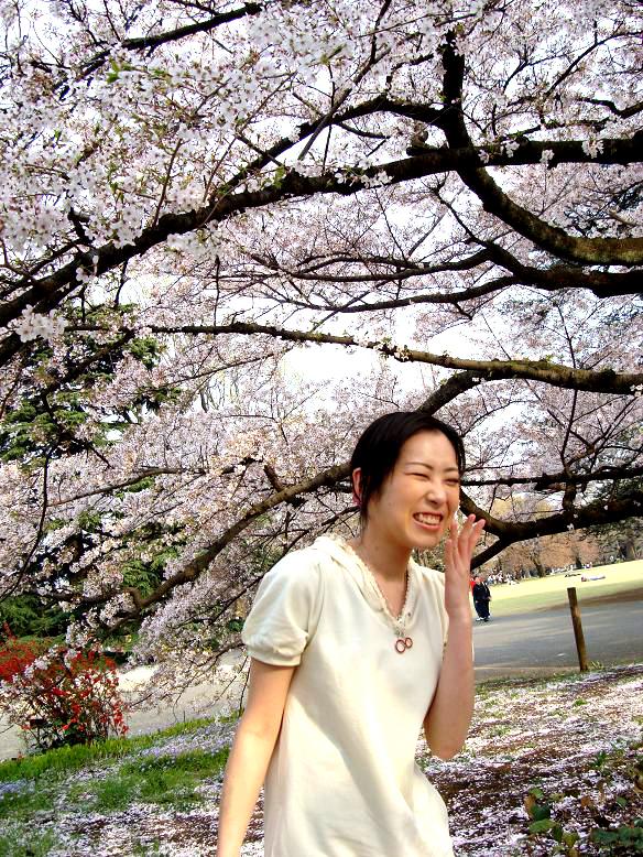 Yuka_sakura11_2